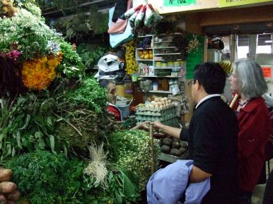 Buying usnea lichen in Quito with Paul Gamboa of the Universidad Central del Ecuador