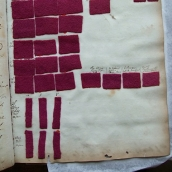 Orchil samples on wool flannel; early 1800s