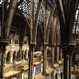 View of the Natural History Museum, Oxford