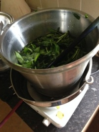 Bain-marie used to heat leaves in water