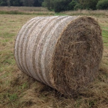 The cylindrical bale