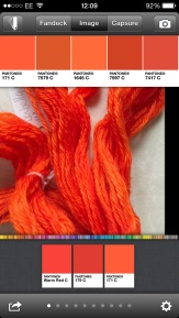 Screenshot showing image and analysis from MyPANTONE app. My choice of three 'typical' hues are at the bottom