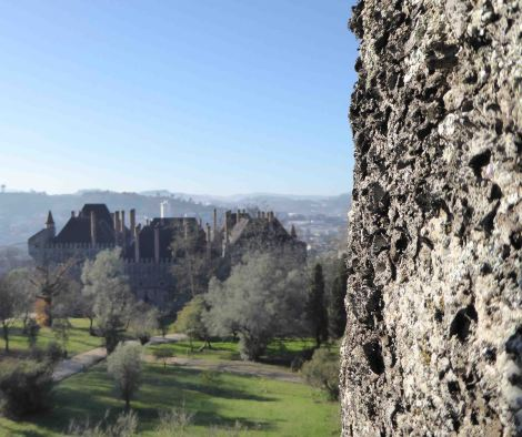 Lichen growing on the castle at Bragança