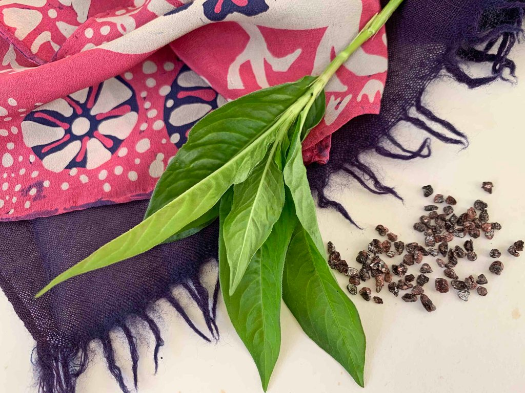 Green leaves of Japanese indigo are shown in top of a pink, white and purple silk scarf with a stylised floral motif. There are small seed-like grains on the right which are cochineal